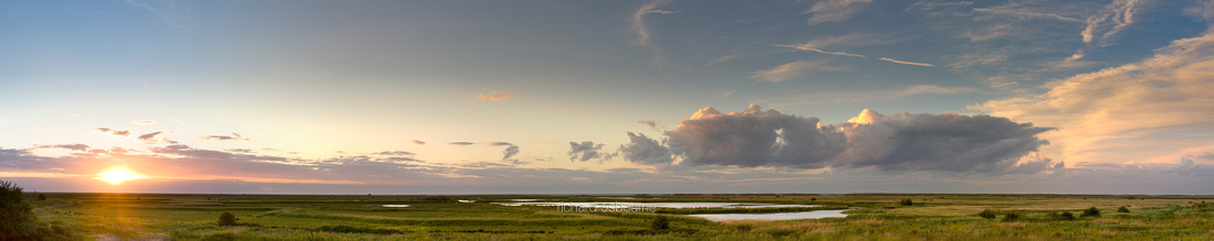 P2W2 Cley Marshes, Norfolk