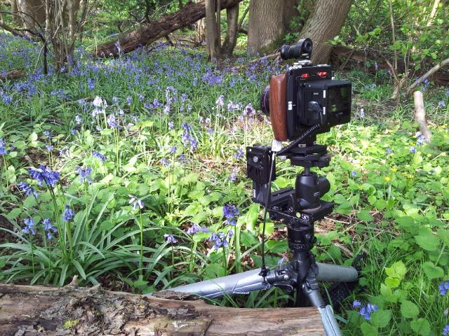 Cambo WRS 1250 Technical Camera, Rodenstock 28 T/S lens, Phase One IQ260 Medium Format Digital Back.
