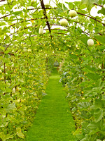 V8G2  Gourd Tunnel, Helmingham Hall Gardens, Suffolk, UK