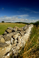 L1L9 Dry Stone Wall, Yorkshire Dales